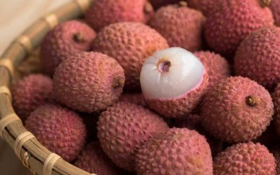What You've Got to Know About the Lychee Fruit